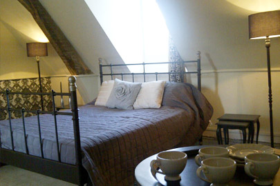 Giffard Chateau La Mothaye Loire Bed and Breakfast B&B